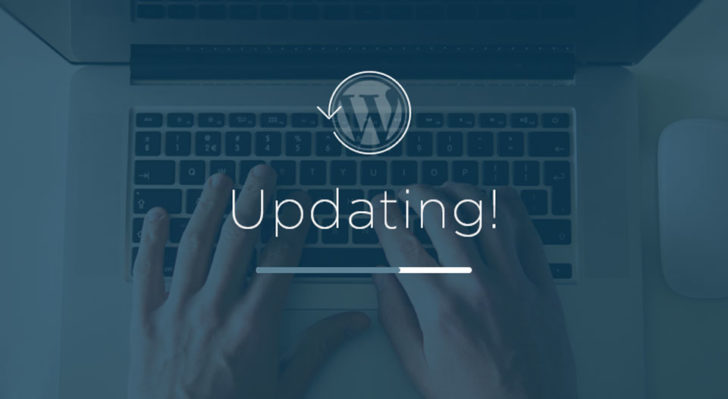 WordPress Security Updates (Complete Guide)