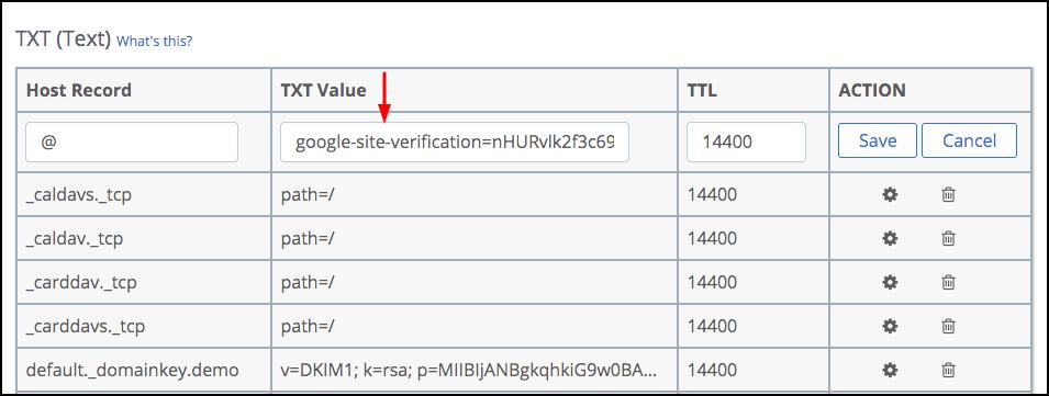 site verification txt