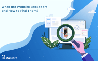 What Are Website Backdoors & How To Clean Them?