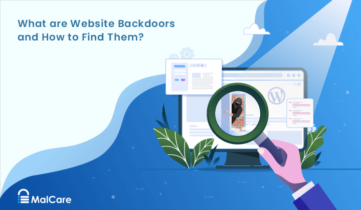 What Are Website Backdoors & How to Find Them?