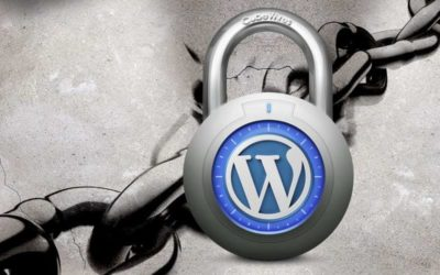 Why You Need a WordPress Security Service?