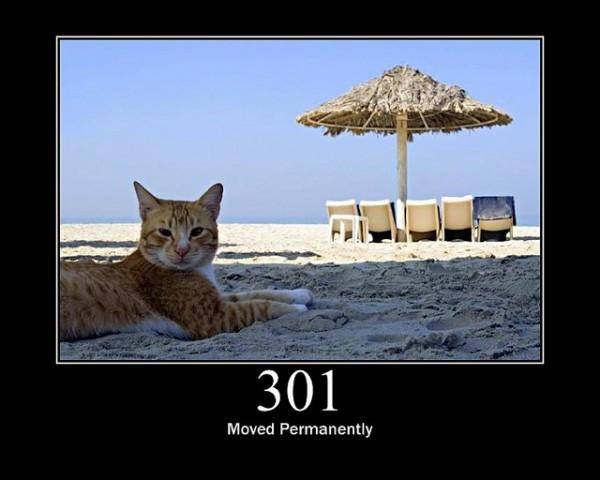 301 error