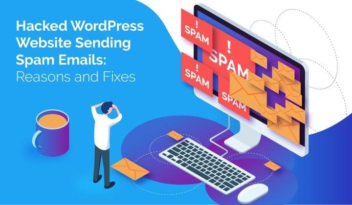 wordpress sending spam email