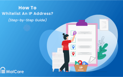 How to Whitelist an IP Address? (Step-by-Step Guide)