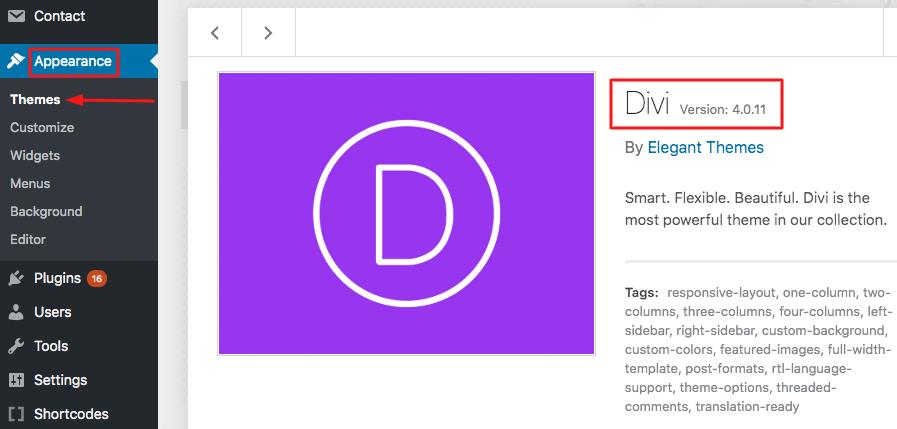 wordpress divi theme update