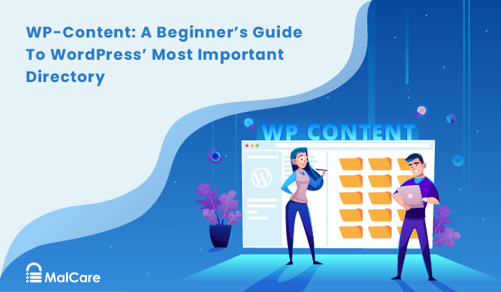 WP-Content: A Beginner's Guide To WordPress' Most Important Directory