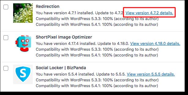 view wordpress update details
