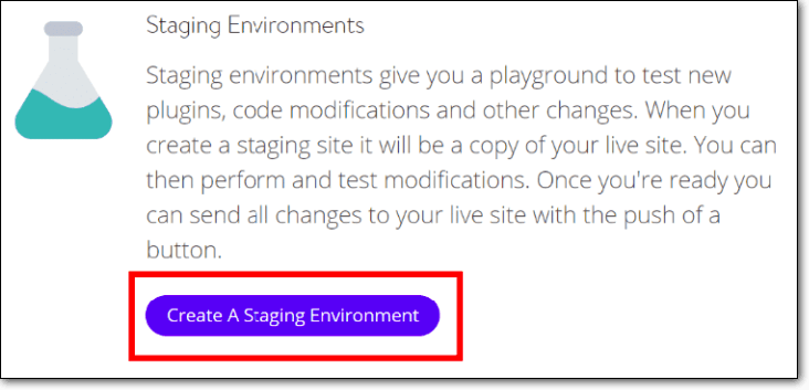 create a staging environment with kinsta