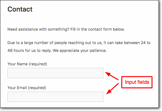 contant form input fields