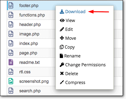 footer.php download